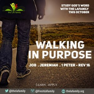walking-in-purpose